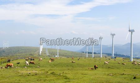 windkraftanlagen auf einen windpark in galicien