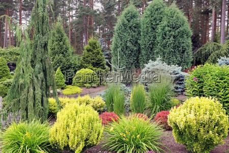 design garden landscape with mix of