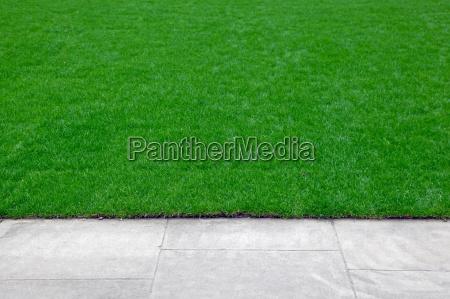 lawn edge