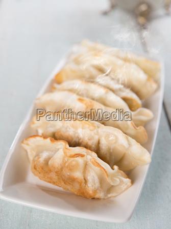 asian food pan fried dumplings