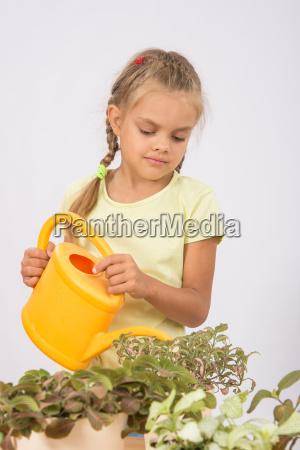 six year girl watering flowers watering