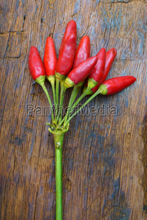 bunch of fresh ripe chilies on