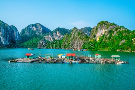 schwimmende fischerdorf in halong bucht