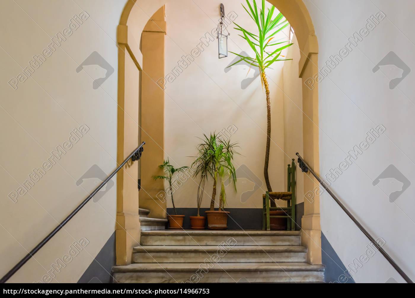 treppen, pflanzen, und, ein, stuhl - 14966753