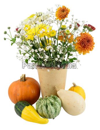 blume pflanze gewaechs halloween dekoration ausschmueckung
