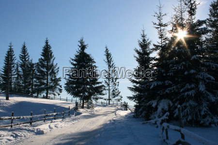 winter frost landschaftsbild landschaft natur freeze
