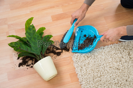 man reinigung schlamm verschuettet aus topfpflanze