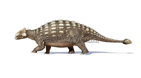 photorealistic 3 d rendering eines ankylosaurus