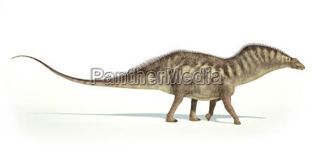 photorealistic darstellung eines amargasaurus dinosaurier seitenansicht