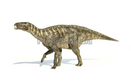 iguanodon dinosaurier fotorealistische darstellung seitenansicht