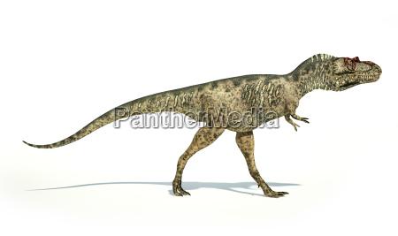 albertosaurus dinosaur fotorealistische darstellung seitenansicht