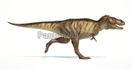 tyrannosaurus rex dinosaurier fotorealistische darstellung seitenansicht
