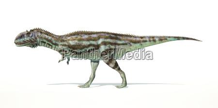 majungasaurus dinosaurier photorealistische darstellung seitenansicht