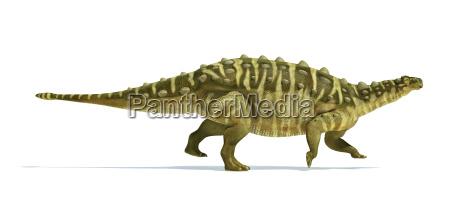 talarus dinosaurier fotorealistische und wissenschaftlich korrekte