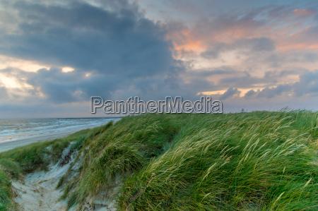 sommer strand an daenemarks nordseekueste