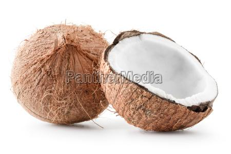 kokosnuss getrennt auf weissem hintergrund