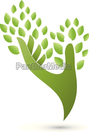 hand and leaves naturopath logo