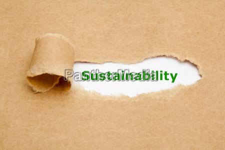 nachhaltigkeit heftiges papier konzept