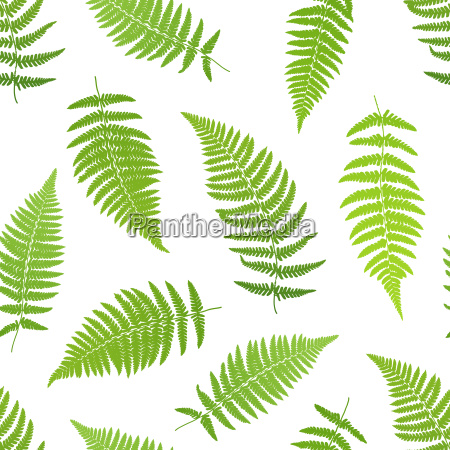fern frond silhouettes seamless pattern vector