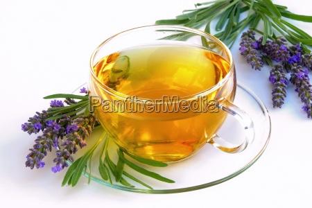 tea lavender te de lavanda