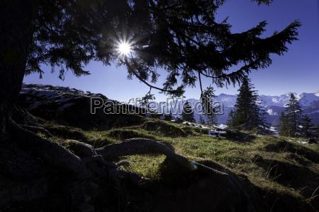 herbst in der schweiz alpen im