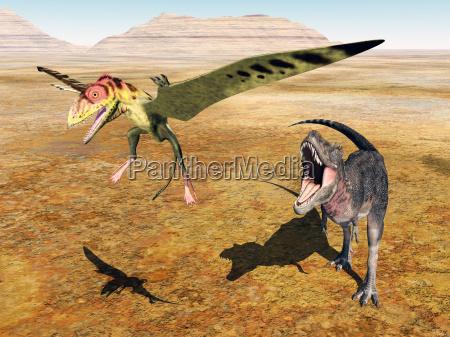 tarbosaurus attackiert den peteinosaurus