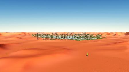 wuestenlandschaft mit einer oase