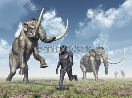 homo habilis und mammuts