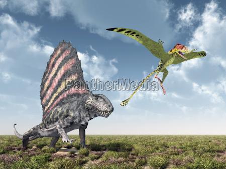 dimetrodon attackiert den peteinosaurus