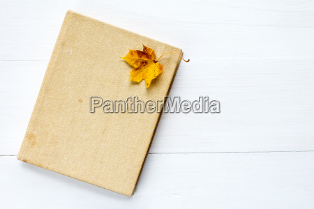 book and old leaf on wooden