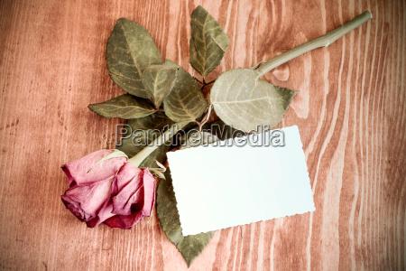 rose und leere karte auf holztisch