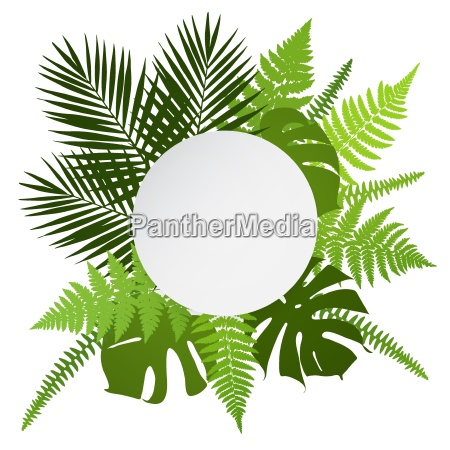 tropical leaves background with white round