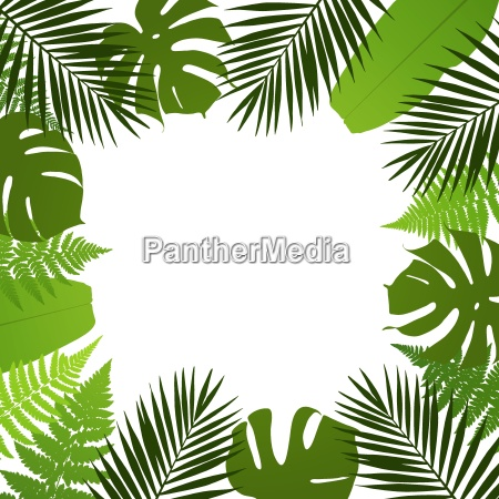 tropical leaves background frame with palm