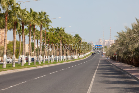 alley mit palmen in doha katar