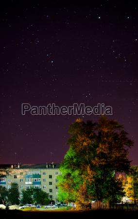stadt baum nacht nachtzeit russland sternenlicht