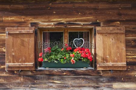 huettenfenster mit geranien