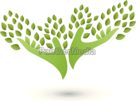 two hands as a treeleavesnaturopathlogo