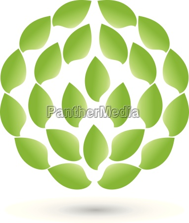 leaves in a circlelogonaturopathvector