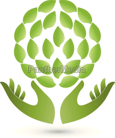 two hands and leavesplantnaturopathlogo