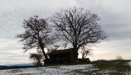 stadel scheune silhoutte gegenlicht scherenschnitt winter