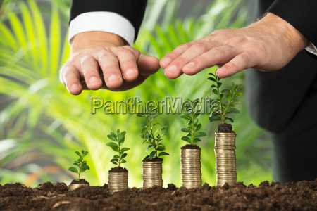 person hand protecting small plant on