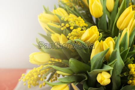helle fruehling strauss tulpen und mimosen