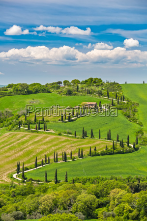 beautiful landscape in tuscany with curved