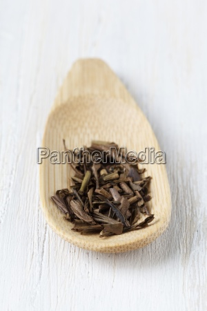 wooden spoon of hojicha on white