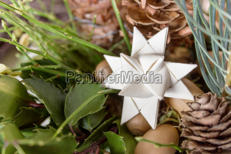 white paper star with pine branches