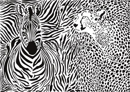 zebra und gepard und muster hintergrund