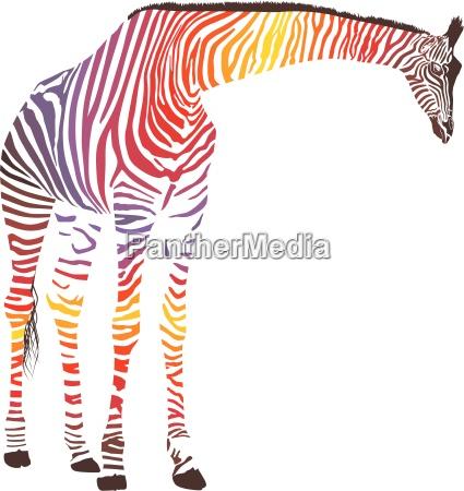 abstrakte giraffe mit zebrafell
