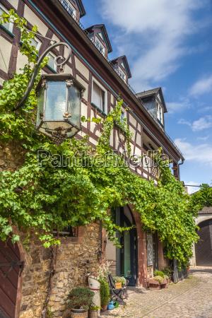 winery in the rheingau