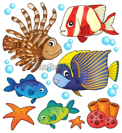 coral reef fish theme collection 1