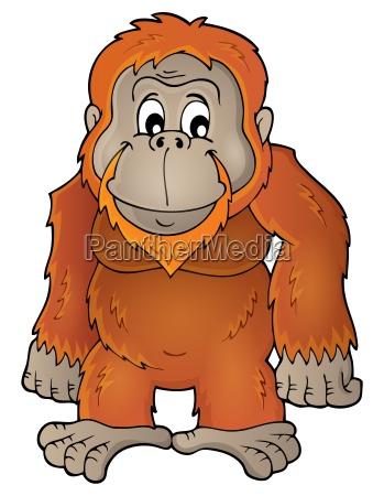 orangutan theme image 1